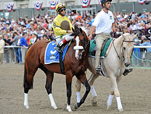 Union Rags in the Belmont Stakes post parade.