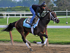 Unlimited Budget - Belmont Park, June 6, 2013.