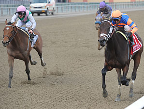 Unlimited Budget wins the 2012 Demoiselle.