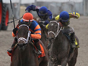 Unlimited Budget wins the 2013 Rachel Alexandra.