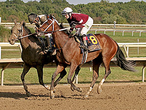 Untapable wins the 2014 Cotillion.