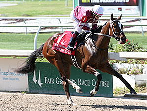 Untapable wins the 2014 Fair Grounds Oaks.