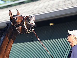 Untapable - Monmouth Park, July 25, 2014.