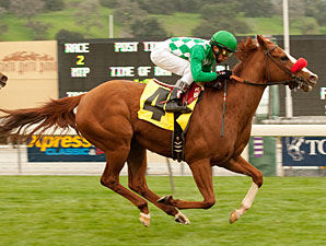 Unzip Me wins the 2011 Monrovia.