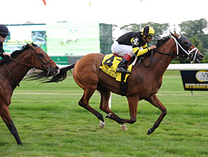 Upgrade wins the 2012 Jaipur.