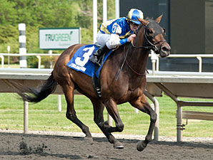Upperline wins the 2012 Arlington Matron.