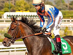 Uzziel wins the 2014 Santa Paula Stakes.