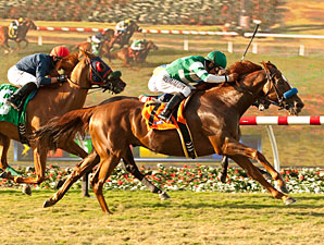 Vagabond Shoes wins the 2013 Del Mar Handicap.
