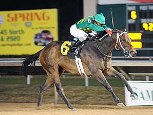Valid Code wins the 2009 Yellow Rose.