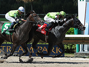 Valid wins the 2014 Eight Miles West Stakes.
