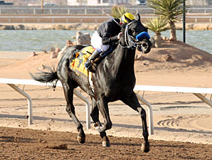 Vamoose wins the 2012 Curribot Stakes.