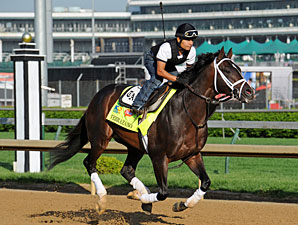Verrazano - Churchill Downs May 1, 2013.