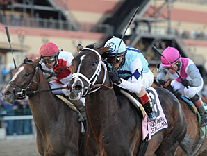 Verrazano wins the 2013 Wood Memorial (Normandy Invasion 2nd).