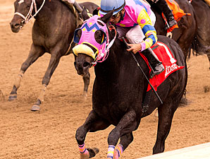 Vianney Lane wins the 2013 Maryland Million Distaff Starter Handicap.