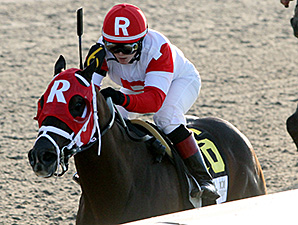 Vicar's In Trouble wins the Louisiana Derby.