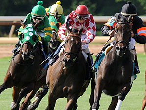 Vickies In Town wins the 2010 Louisiana Cup Distaff.