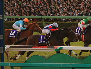 Victoire Pisa in the 2010 Arima Kinen Grand Prix.