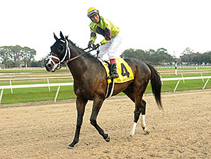 Vinceremos wins the 2014 Sam F. Davis.