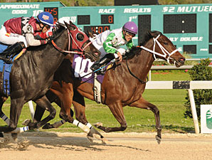 Vitameta wins the 2013 Gasparilla Stakes.