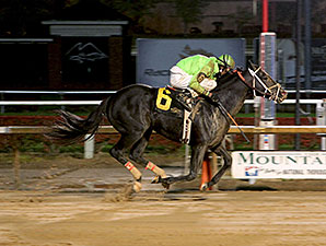 Voodoo Storm wins the 2013 Mountaineer Mile Stakes.