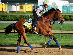 Vyjack - Churchill Downs, May 1, 2013.