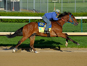 Vyjack - Churchill Downs, April 26, 2013.