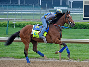 Vyjack - Churchill Downs, April 29, 2013.