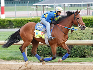 Vyjack - Churchill Downs, April 23, 2013.