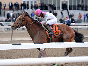 Vyjack wins the 2013 Gotham.