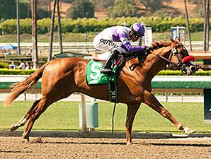 Wake Up Nick wins the Santa Anita Juvenile Stakes.