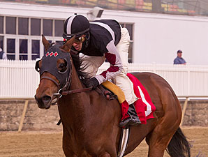 Walkwithapurpose wins the 2012 Maryland Juvenile Filly Championship.