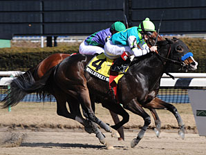 Wall Street Wonder wins the 2010 Toboggan.