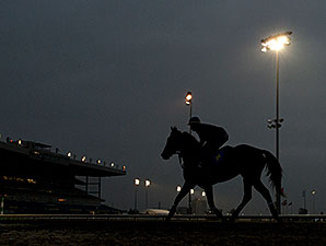 War Dancer - Woodbine, October 17, 2014