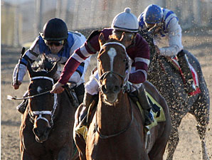 War Echo wins the 2009 DRF Distaff.