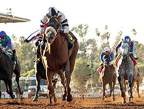Warren's Veneda wins the 2015 Santa Maria Stakes.