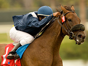 Wasted Tears wins the 2010 John C. Mabee Stakes.