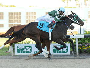 Watch Me Go wins the 2011 Tampa Bay Derby.