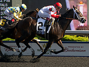 We Miss Artie wins the Woodbine Plate Trial Stakes.