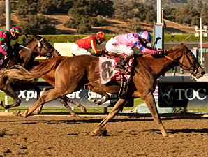 Weemissfrankie wins the Oak Leaf Stakes.