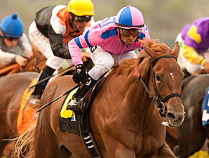 Weemissfrankie wins the 2011 Del Mar Debutante.
