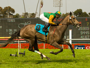 Well Monied Heads Full Field for Del Mar Oaks