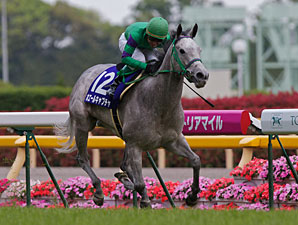 Whale Capture wins the Victoria Mile in Japan.