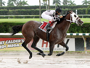 Where's Sterling wins the 2012 Mecke Stakes.