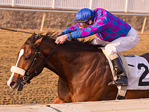 Whiskey Romeo wins the 2012 Marylander.