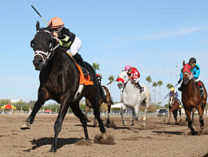 Why Not Be Perfect wins the 2012 Hank Mills Sr. Handicap.
