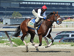 Wicked Strong - Belmont Park, May 30, 2014.