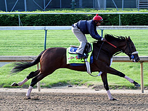 Wicked Strong - Churchill Downs, May 1, 2014.
