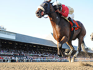 Wicked Strong wins the 2014 Jim Dandy.