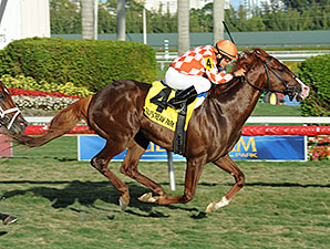 Wicked Tune wins the 2014 Gulfstream Park Turf Sprint.
