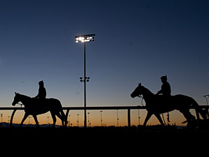Wigmore Hall and Lay Time at Woodbine on October 12, 2012.